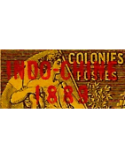 Indochine Timbres Collection Colonie Française