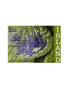 Collections, Timbres, Albums d'Islande