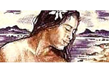 Polynésie Française Timbres Collection
